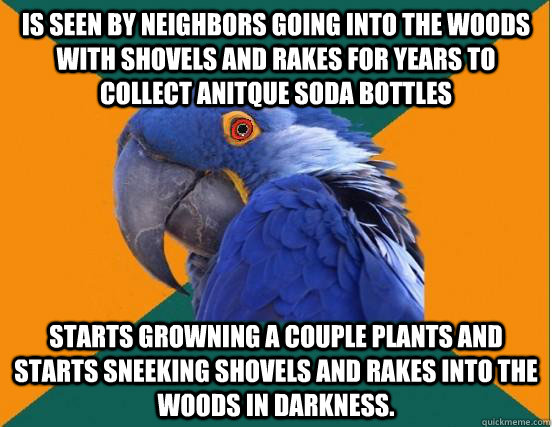is seen by neighbors going into the woods with shovels and rakes for years to collect anitque soda bottles starts growning a couple plants and starts sneeking shovels and rakes into the woods in darkness. - is seen by neighbors going into the woods with shovels and rakes for years to collect anitque soda bottles starts growning a couple plants and starts sneeking shovels and rakes into the woods in darkness.  Misc