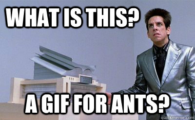 What is this? a gif for ants? - What is this? a gif for ants?  Zoolander