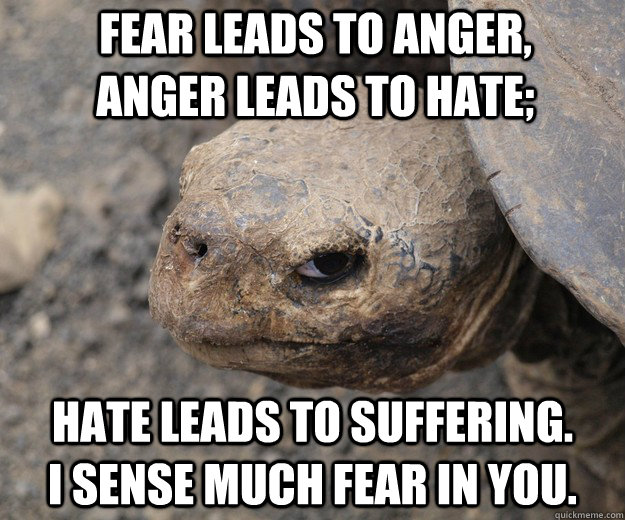 Fear leads to anger,      anger leads to hate;  hate leads to suffering.        I sense much fear in you. - Fear leads to anger,      anger leads to hate;  hate leads to suffering.        I sense much fear in you.  Insanity Tortoise