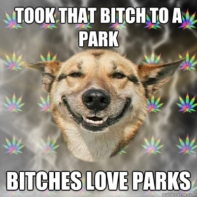 Took that bitch to a park bitches love parks - Took that bitch to a park bitches love parks  Stoner Dog