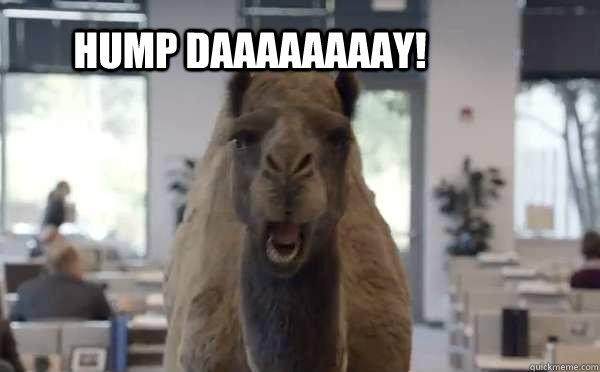 Hump Daaaaaaaay!