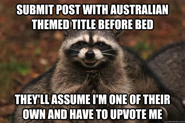 Submit post with Australian themed title before bed They'll assume I'm one of their own and have to upvote me - Submit post with Australian themed title before bed They'll assume I'm one of their own and have to upvote me  Evil Plotting Raccoon