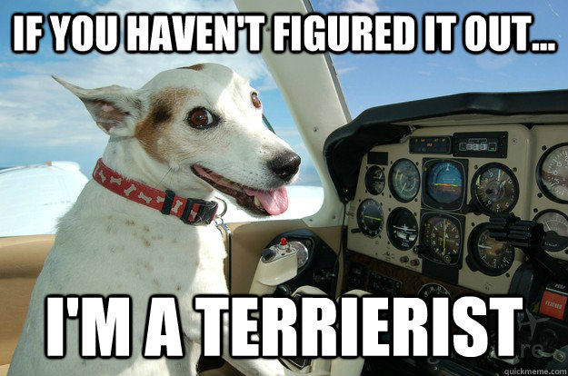 if you haven't figured it out... I'm a terrierist