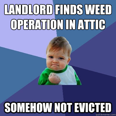 landlord finds weed operation in attic somehow not evicted - landlord finds weed operation in attic somehow not evicted  Success Kid