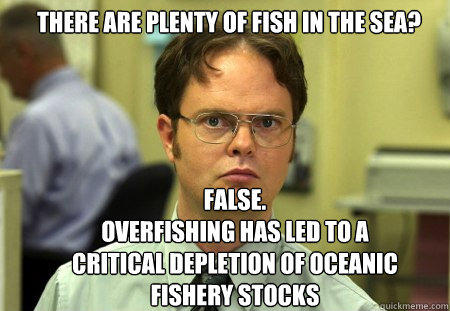 there are plenty of fish in the sea? false. overfishing has led to a critical depletion of oceanic fishery stocks  Schrute
