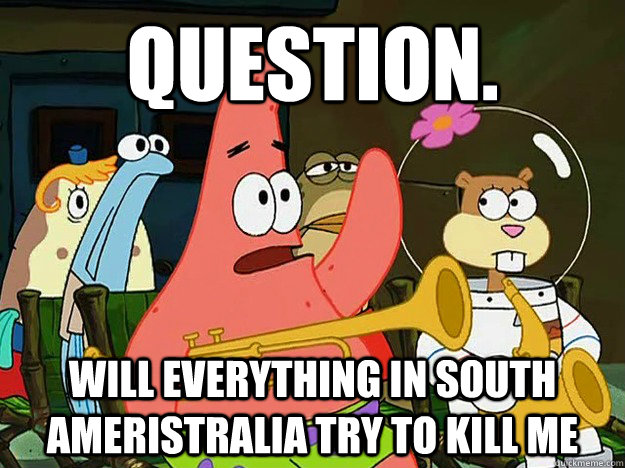 Question. will everything in south ameristralia try to kill me - Question. will everything in south ameristralia try to kill me  Question Asking Patrick