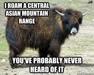 Central Asian Range 88
