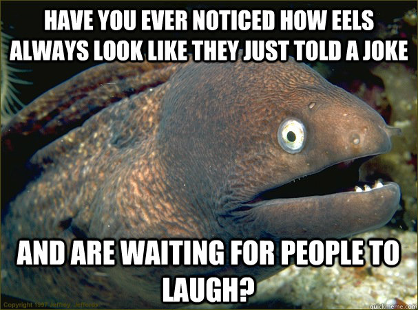 have you ever noticed how eels always look like they just told a joke and are waiting for people to laugh?  Bad Joke Eel