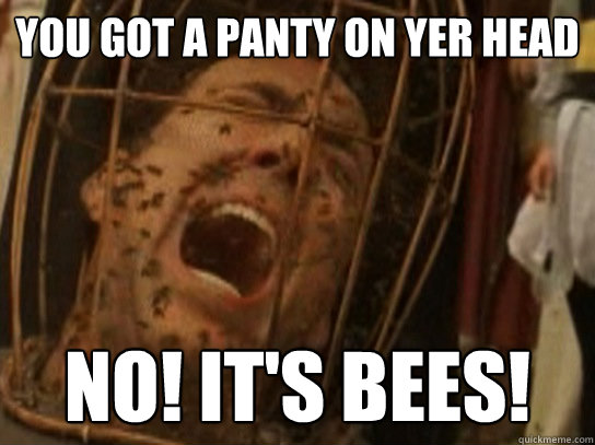 You got a panty on yer head NO! it's bees! - You got a panty on yer head NO! it's bees!  Nicolas Cage