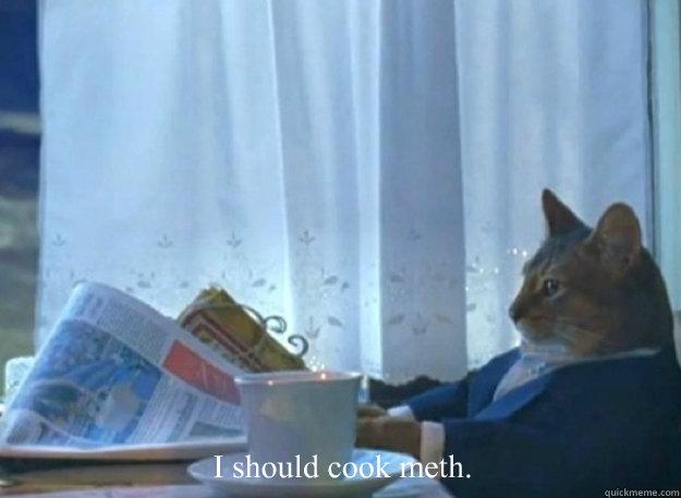 I should cook meth.