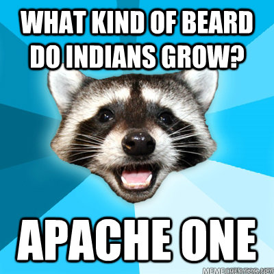 What kind of beard do indians grow? Apache one - What kind of beard do indians grow? Apache one  Lame Pun Coon