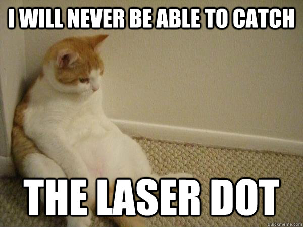 I will never be able to catch the laser dot