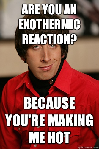Are you an exothermic reaction? Because you're making me hot - Are you an exothermic reaction? Because you're making me hot  Howard Wolowitz