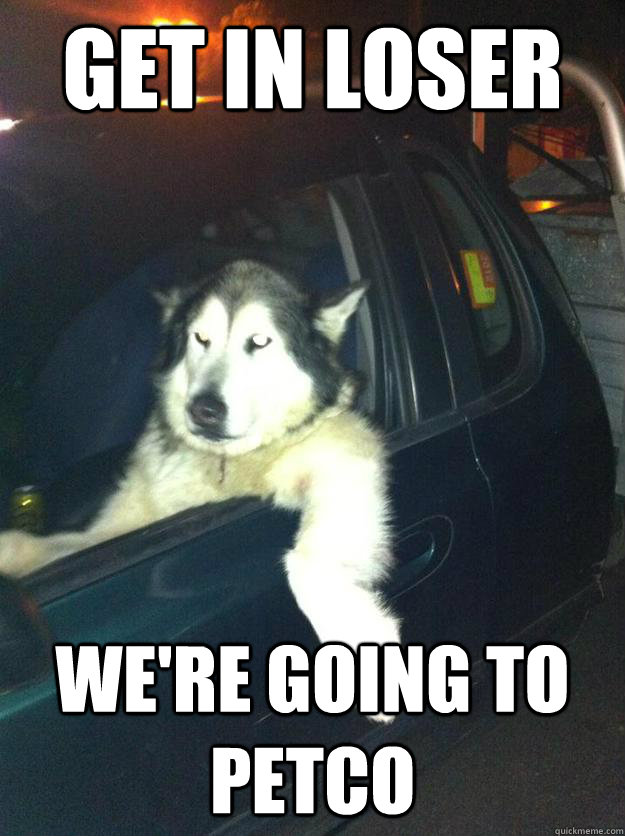 Get in loser We're going to Petco - Get in loser We're going to Petco  Mean Dog