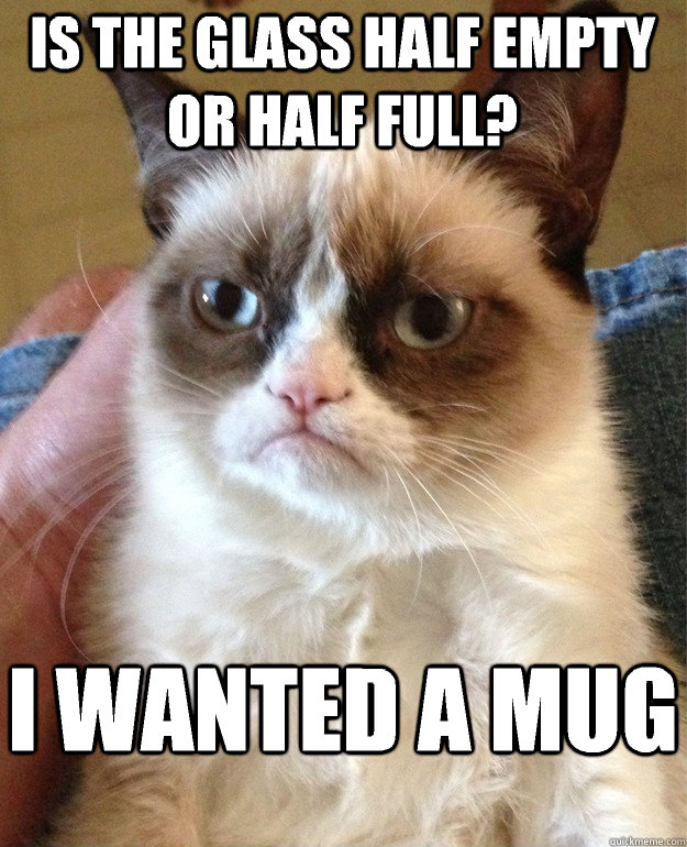 Is the glass half empty or half full? I wanted a mug - Is the glass half empty or half full? I wanted a mug  Grumpy Cat