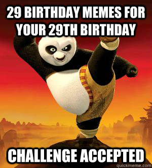 29 Birthday memes for your 29th birthday Challenge Accepted  Kung Fu Panda Challenge Accepted