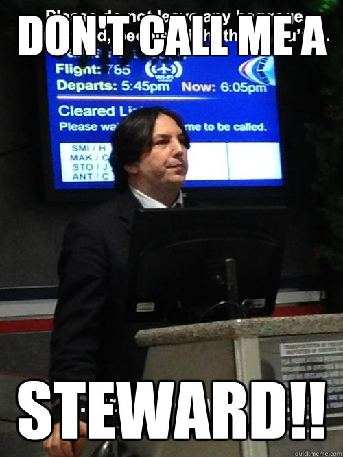 DON'T CALL ME A STEWARD!!