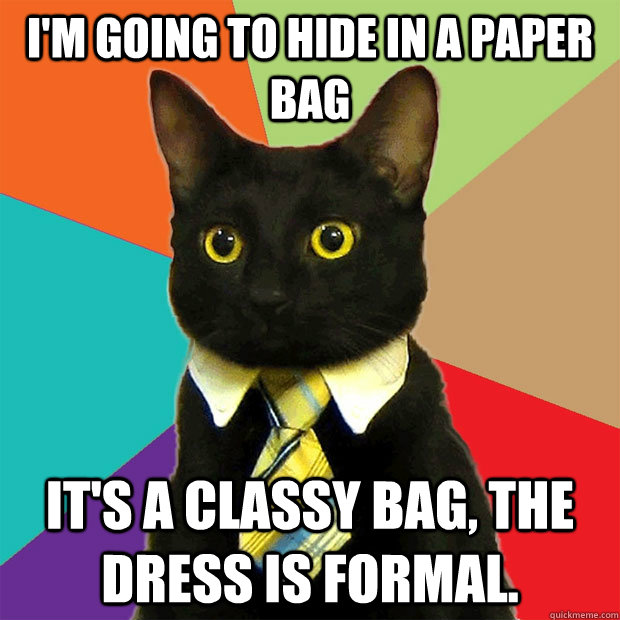 i'm going to hide in a paper bag it's a classy bag, the dress is formal. - i'm going to hide in a paper bag it's a classy bag, the dress is formal.  Business Cat