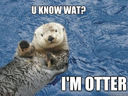 U KNOW WAT? I'M OTTER