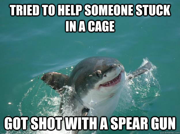 Tried to help someone stuck in a cage got shot with a spear gun  Misunderstood Shark
