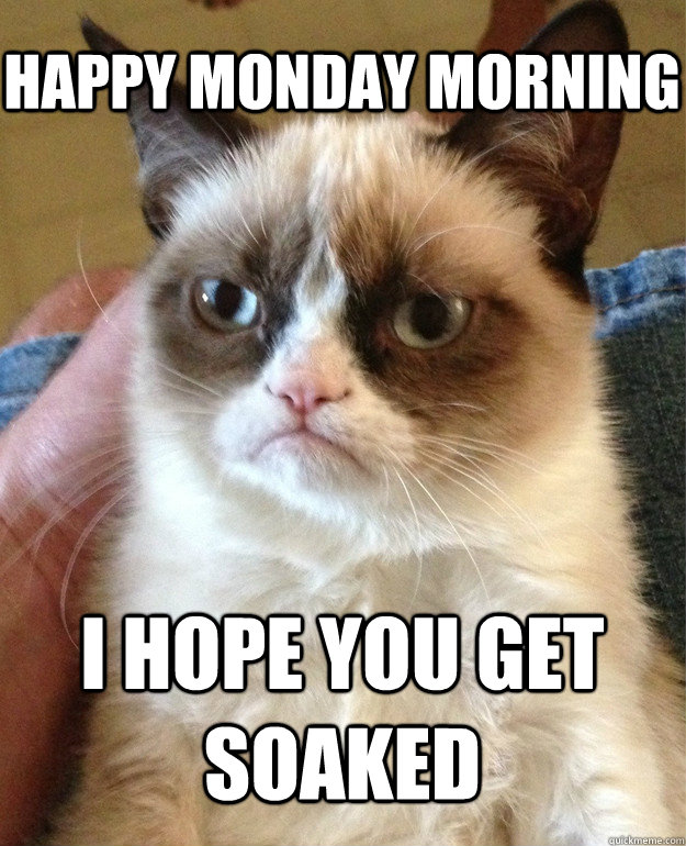 Happy Monday Morning I hope you get soaked - Happy Monday Morning I hope you get soaked  Grumpy Cat