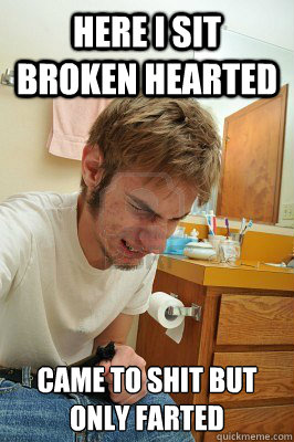 Here I sit broken hearted Came to shit but only farted