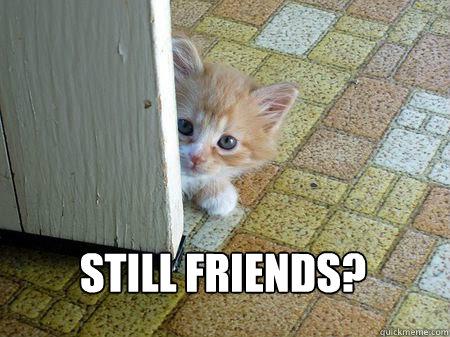 Still friends?  Sorry Cat