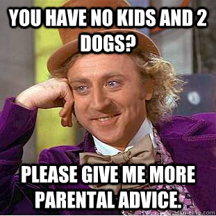 You have no kids and 2 dogs? Please give me more parental advice. - You have no kids and 2 dogs? Please give me more parental advice.  Condescending Wonka