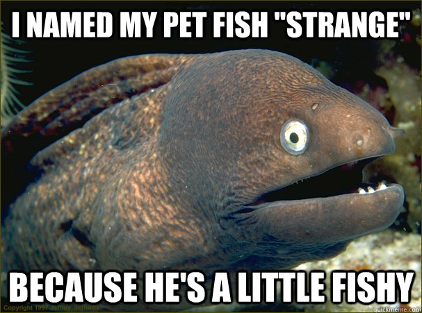 I named my pet fish