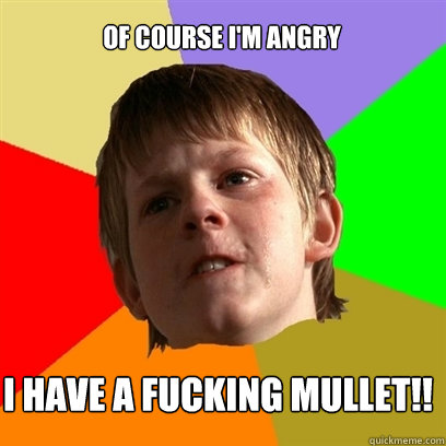 of course i'm angry i have a fucking mullet!! - of course i'm angry i have a fucking mullet!!  Angry School Boy