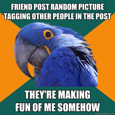 Friend post random picture tagging other people in the post THEY'RE MAKING FUN OF ME somehow - Friend post random picture tagging other people in the post THEY'RE MAKING FUN OF ME somehow  Paranoid Parrot