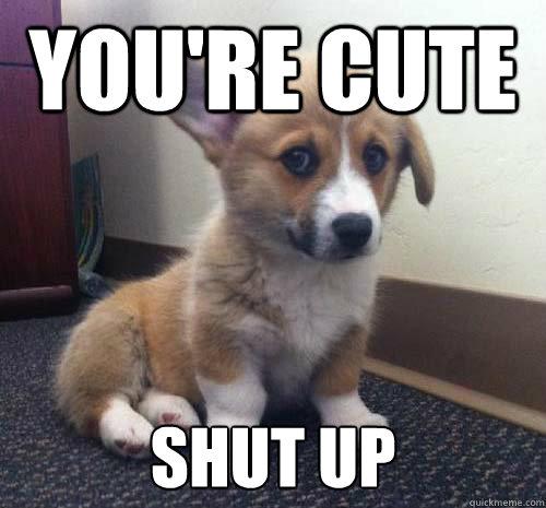 you re cute shut up