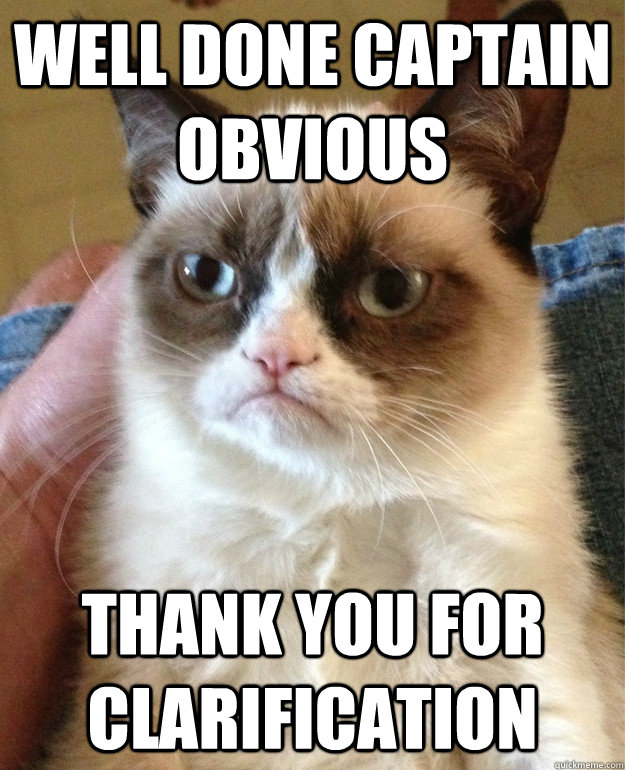 well done captain obvious thank you for clarification - well done captain obvious thank you for clarification  Grumpy Cat