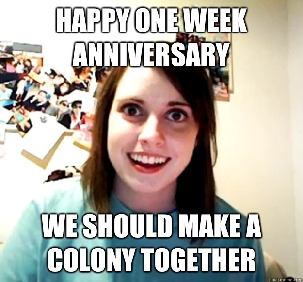 Happy one week anniversary We should make a colony together - Happy one week anniversary We should make a colony together  Misc
