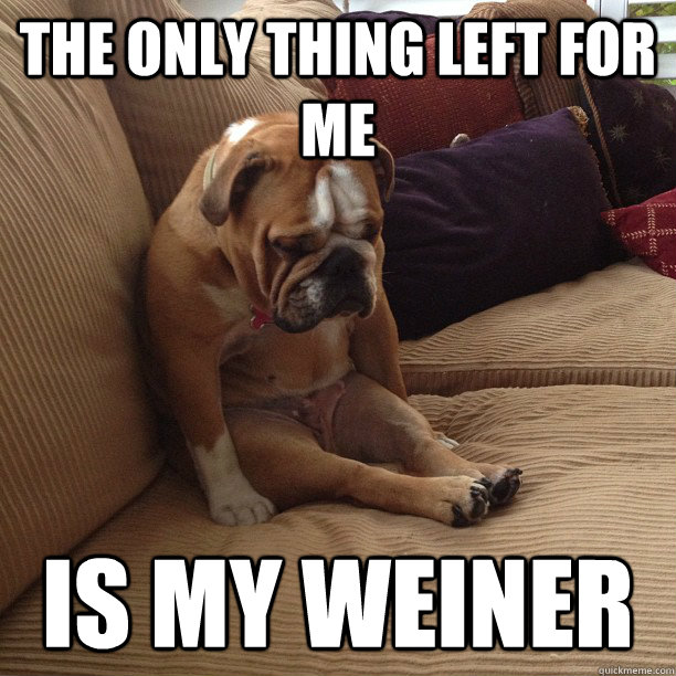the only thing left for me is my weiner  depressed dog