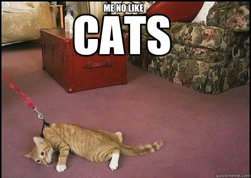 CATS  ME NO LIKE