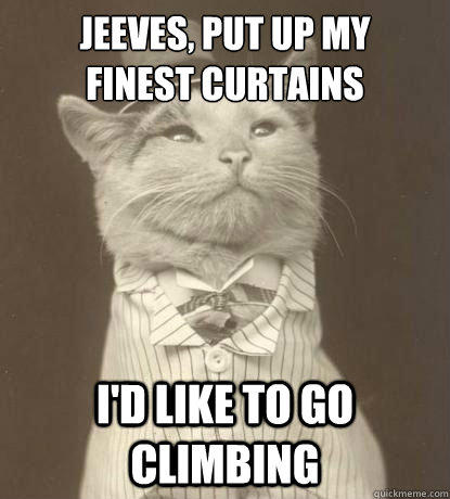 Jeeves, put up my  finest curtains I'd like to go climbing