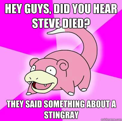 Hey guys, did you hear Steve died? They said something about a stingray