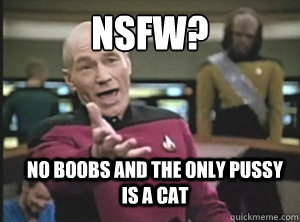 NSFW? NO BOOBS AND THE ONLY PUSSY IS A CAT - NSFW? NO BOOBS AND THE ONLY PUSSY IS A CAT  Annoyed Picard