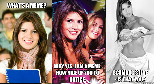 What's a Meme? Why Yes, I am a Meme,  How nice of you to notice. Scumbag Steve - Is That You?