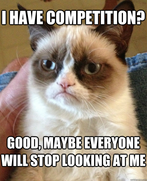 i have competition? good, maybe everyone will stop looking at me - i have competition? good, maybe everyone will stop looking at me  Grumpy Cat