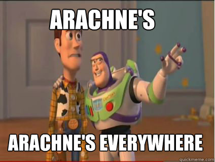 arachne's arachne's everywhere - arachne's arachne's everywhere  woody and buzz