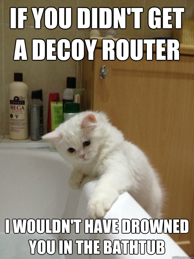 If you didn't get a decoy router I wouldn't have drowned you in the bathtub