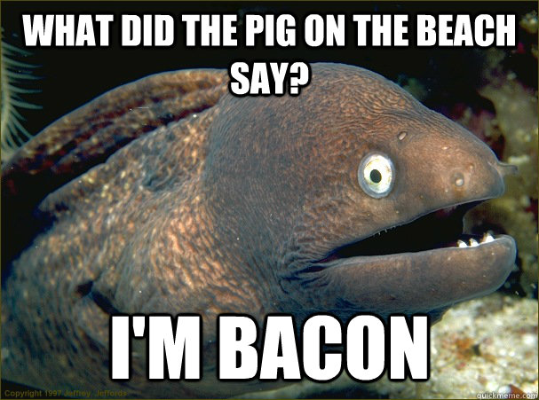 what did the pig on the beach say? i'm bacon - what did the pig on the beach say? i'm bacon  Bad Joke Eel