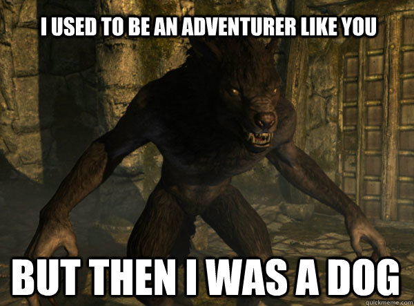 I USED TO BE AN ADVENTURER LIKE YOU BUT THEN I WAS A DOG