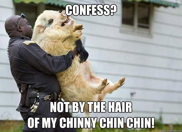 Confess? Not by the hair of my chinny chin chin! - Confess? Not by the hair of my chinny chin chin!  Misc