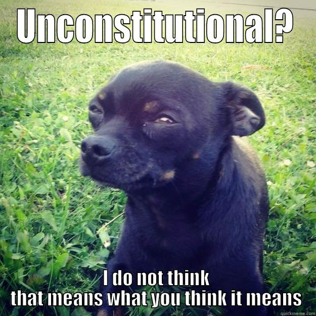 UNCONSTITUTIONAL? I DO NOT THINK THAT MEANS WHAT YOU THINK IT MEANS Skeptical Dog