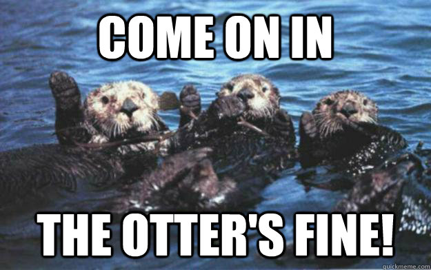 Come on in The otter's fine!