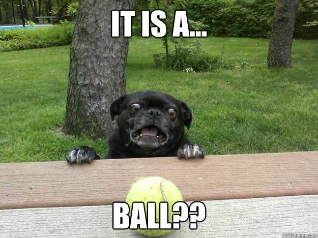 It is a... BALL??