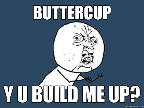 BUTTERCUP Y U BUILD ME UP? - BUTTERCUP Y U BUILD ME UP?  Y U No